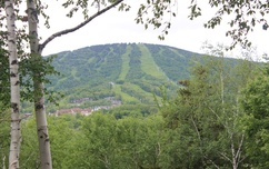 Summer on Stratton Mountain